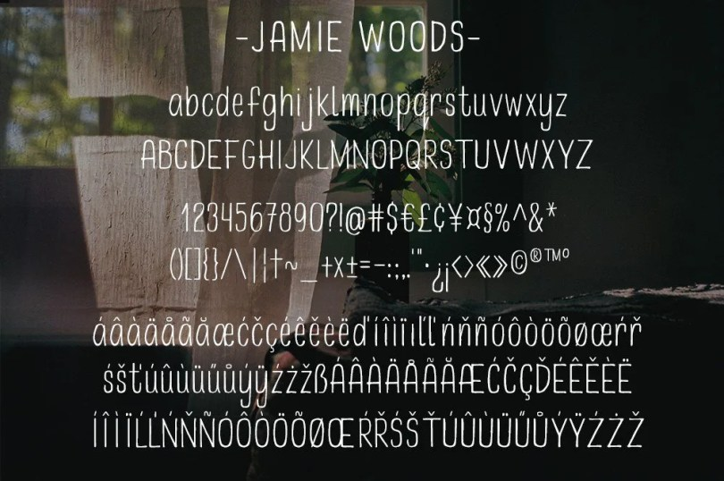 Jamie Woods [1 Font]   The Fonts Master