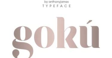 Goku [1 Font] | The Fonts Master