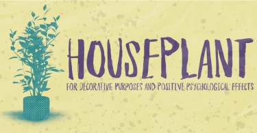 Houseplant [1 Font] | The Fonts Master