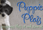 Puppies Play [1 Font] | The Fonts Master