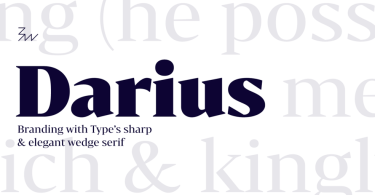 Bw Darius [4 Fonts] | The Fonts Master