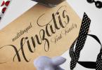 Hinzatis [4 Fonts] | The Fonts Master