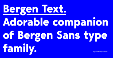 Bergen Text [6 Fonts] | The Fonts Master