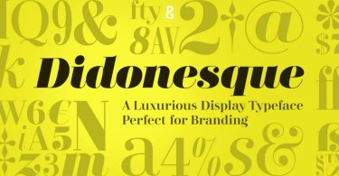 Didonesque Super Family [16 Fonts] | The Fonts Master