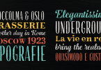 Gessetto [9 Fonts]