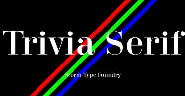 Trivia Serif [14 Fonts] | The Fonts Master