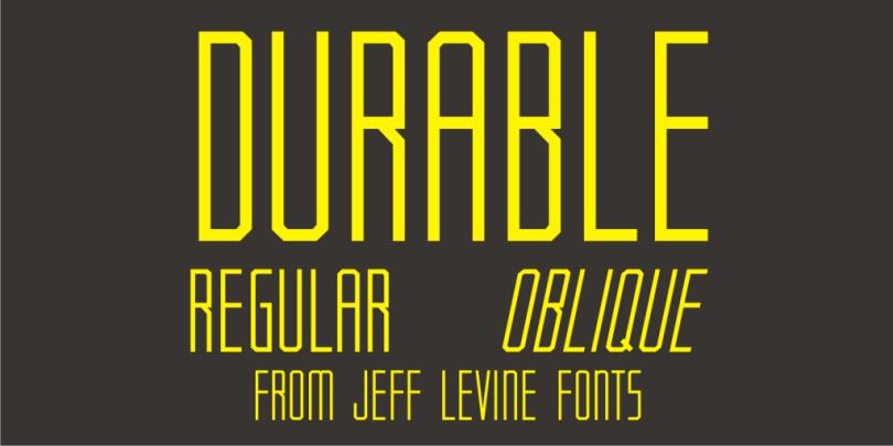 Durable Jnl [2 Fonts] | The Fonts Master