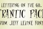 Frantic Pace Jnl [1 Font] | The Fonts Master