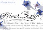 Prima Script [4 Fonts] | The Fonts Master