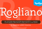 Rogliano Super Family [14 Fonts] | The Fonts Master