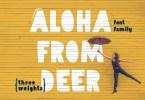 Aloha [3 Fonts] | The Fonts Master