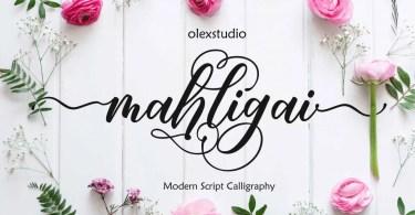 Mahligai Script [1 Font] | The Fonts Master