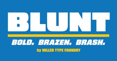 Blunt [8 Fonts] | The Fonts Master