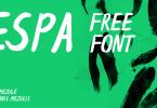 Espa [1 Font] | The Fonts Master