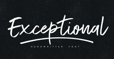 Exceptional [3 Fonts] | The Fonts Master