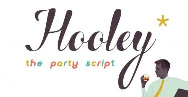 Hooley [1 Font]   The Fonts Master