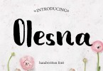 Olesna [1 Font] | The Fonts Master