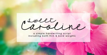 Sweet Caroline [2 Fonts] | The Fonts Master