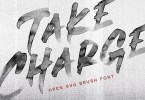 Take Charge [1 Font] | The Fonts Master