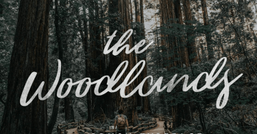 The Woodlands [1 Font]   The Fonts Master