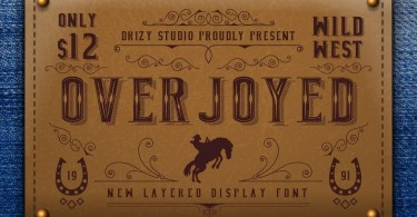 Overjoyed [3 Fonts] | The Fonts Master