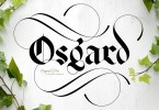 Osgard Pro [3 Fonts] | The Fonts Master