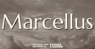 Marcellus Pro [1 Font] | The Fonts Master