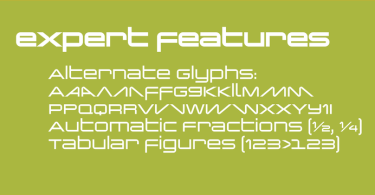 Changeling Neo [5 Fonts] | The Fonts Master