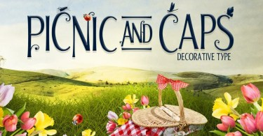 Picnic Caps Fonts [2 Fonts] | The Fonts Master