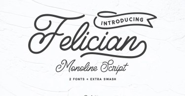 Felician Monoline Script [3 Fonts] | The Fonts Master