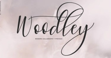Woodley [1 Font] | The Fonts Master