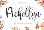Pichellya [1 Font] | The Fonts Master
