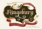 Wt Kingsbury [5 Fonts] | The Fonts Master