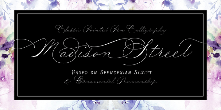 Madison Street Super Family [8 Fonts] | The Fonts Master