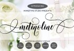 Metinoline Script [1 Font] | The Fonts Master