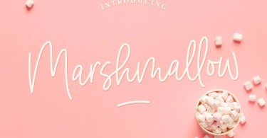 Marshmallow [2 Fonts] | The Fonts Master