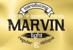 Marvin Light [2 Fonts] | The Fonts Master
