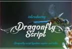 Dragonfly Script [2 Fonts] | The Fonts Master