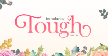 Tough [2 Fonts]