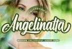 Angelinatta [1 Font] | The Fonts Master