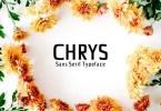 Creativetacos Chrys [4 Fonts] | The Fonts Master