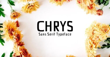 Creativetacos Chrys [4 Fonts] | The Fonts Master