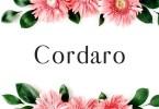 Creativetacos Cordaro [2 Fonts]   The Fonts Master