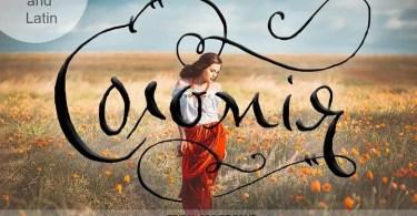 Solomiya [1 Font] | The Fonts Master