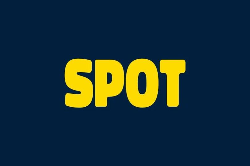Spot [4 Fonts]