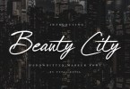 Beauty City [1 Font] | The Fonts Master