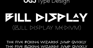 Bill Display Medium Super Family [16 Fonts] | The Fonts Master