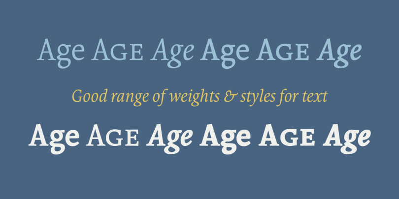 Borges Super Family [11 Fonts]   The Fonts Master