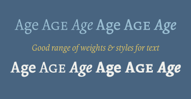 Borges Super Family [11 Fonts] | The Fonts Master