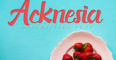 Acknesia [1 Font] | The Fonts Master